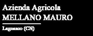 logo Partner AZ AGR MELLANO