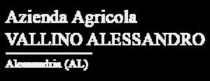 logo Partner AZ AGR VALLINO