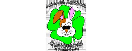 logo Partner CUNIGRANDA 450x174 nero gelsonet