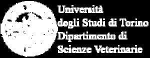 logo Partner-DSV-450x174-bianco-gelsonet