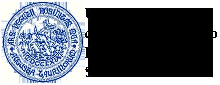 logo Partner DSV 450x174 nero gelsonet