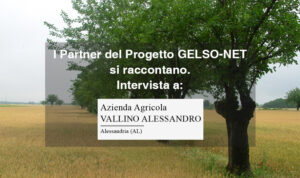 Partner Progetto Gelso-Net