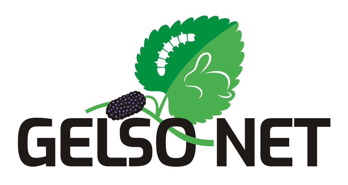 Logo Gelso-Net
